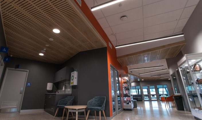 linear lighting fixture
